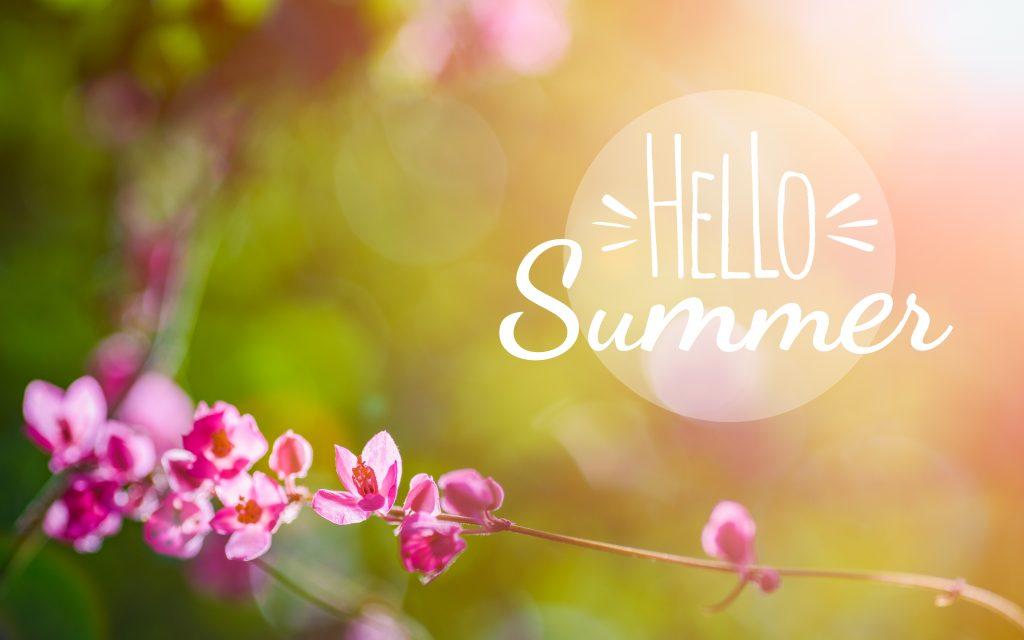 Summer Newsletter